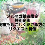 メルマガ読者限定特別企画